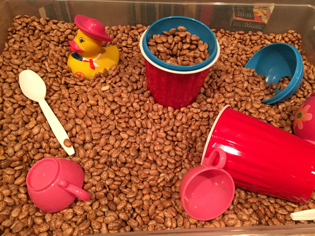 A bin of beans and other simple ways to add a variety of play to your child's day!
